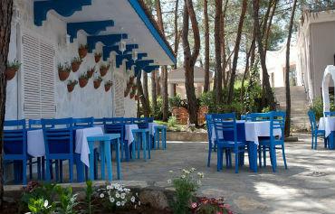 Hotel Pine Valley | Hotels in Turkey | Hays Travel