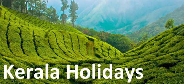 Cheap Kerala Holidays